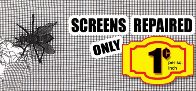 Home Screen Repair